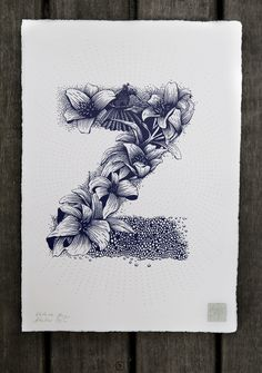 Nature Inspired Typography by Valérie Hugo