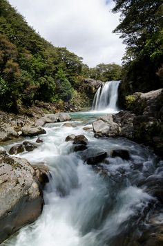 Falls and Flow, New Zealand