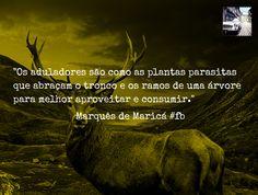Os aduladores são como as plantas parasitas que abraçam o tronco e ramos de uma árvore para melhor a aproveitar e consumir. http://www.vitrinepix.com.br/marquesmarica