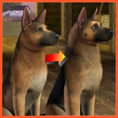 German Shepherd Improved by LittleV - The Exchange - Community - The Sims 3