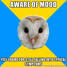 Bipolar Owl how about manic psychosis or suicide? Oh yeah, it can get a whole lot worse. Bipolar disorder is a very serious illness! Living With Bipolar Disorder, Panic Disorder, Anxiety Disorder, Mental Illness, Chronic Illness, Chronic Fatigue, Chronic Pain, Fibromyalgia, Bipolar Humor
