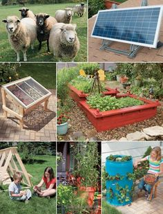 DIY Projects for the Self-Sufficient Homeowner: 25 Ways to Build a Self-Reliant Lifestyle: Click the picture to learn how!