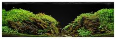 So, 3m after setup. Ill try transprent... - Aquascape by Voloduson