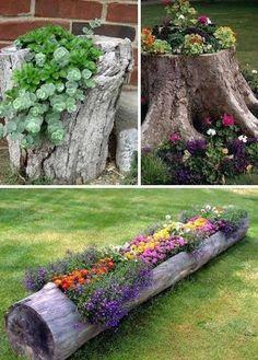 Great outdoor ideas.  Tree trunk. Plants. Flowers.