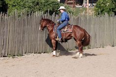 Turn Tune-Up with Sandy Collier Use this exercise on the fence to teach your horse to spin or add speed to the maneuver.