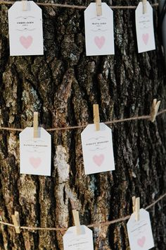 Find a creative way to display your escort cards and show off your wedding style, like wrapping tags around a tree for a rustic wedding