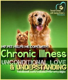 I don't know what I would do without my pups, they are a blessing <3 Why Animals Help Hurting People with Chronic Illness
