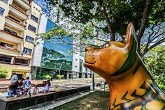 Bulevar del Río, el espacio que le cambio la cara a #Cali #PorCaliLoHagoBien #MiCaliSoñada Giraffe, Animals, Bridges, Walks, Parks, Space, Felt Giraffe, Animales, Animaux