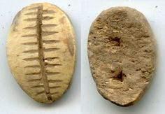 Bone cowrie-shell - earliest Chinese coin, Zhou dynasty (circa 1046-771 BC).