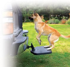 Pet Step A Perfect Companion for Your Companion ~ Portable pet step helps your dog get in and out of your car ~ Reduces stress and stress related injuries ~ Perfect for SUV's, older dogs, and giant breed dogs ~ Easily attaches to your hitch Twistep Dog Ramp For Car, Portable Dog Kennels, Dog Stairs, Airline Pet Carrier, Diy Dog Kennel, Pet Steps, Dog Car Seats, Animal Room, Dog Rooms