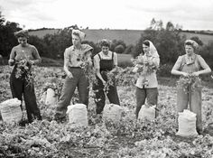 History in Photos: Land Girls