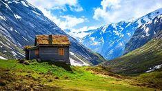 ノルウェー > 古い家