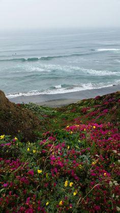 Sea Ranch - Sonoma County, California  (photograph by SR designs - Shawna Ralston)