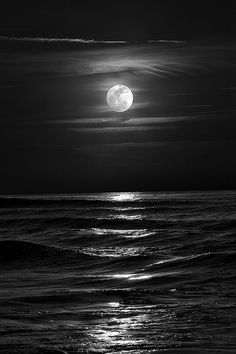 The moon rose like polished silver against the blackened out sky.