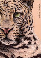 My drawing with colour pencils and black/white marker. :) Maybe it's a dangerous animal, but I like it.