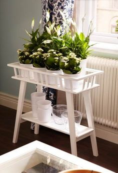 Reach for some sun with LANTLIV plant stands Flower Stands, Modern Plant Stand, Diy Plant Stand, Indoor Plant Stands, Home Projects, Hanging Plant, Corner Plant, Plant Table, Ikea Plants