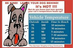 dont leave pets in hot cars | Dog in Hot Car, dog locked in a hot car