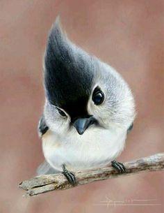 Marie-Mai Bouchard LaVoixJacynthe LaVoixCharlotte Jacinthe xxx :-)  petit oiseau chanceux