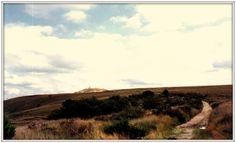 Monts d'Arrée - Huelgoat, Bretagne. 1992