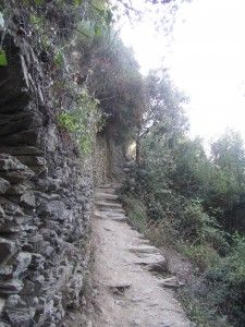 Hiking the trails through woods, and vineyards on the Italian Riviera.