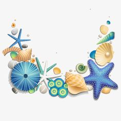 Blue Starfish y conchas Libre PNG y Vector Free Adult Coloring, Underwater Painting, Kids Background, Wreath Drawing, Ocean Themes, Scrapbook Embellishments, Shell Art, Letter Art, Art Sketchbook