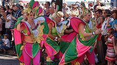 helsinki samba carnaval papagaio - Google Search