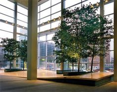 Interior plants have even been shown to increase occupancy and retention.