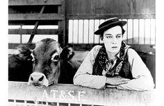 """Il simbolo del cineforum sambenedettese: Buster Keaton in""""Go West"""""""