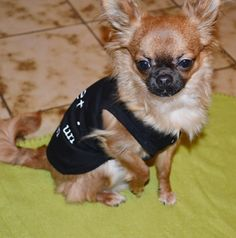 Harybo avec son t shirt Ohpacha