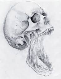 1000+ images about skulls on Pinterest   Skull drawings ...