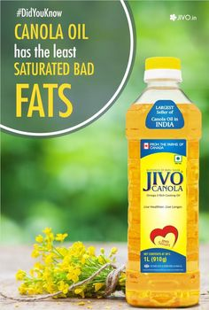 #DidYouKnow #Jivo  Canola oil has the least saturated fats and the most plant-based Omega-3 fat  Share & Spread!
