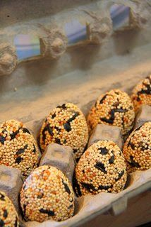 Birdseed eggs to hang or gift Mix as listed 8 1/3 to 1/2 cups bird seed 1/3 cup gelatin 1 1/2 cups water 36-38 fillable plastic Easter eggs. Lightly coat the molds with the vegetable spray. Pack the eggs using a teaspoon, snap them together and place into an egg carton for chilling. Chill the eggs for a couple of hours and remove carefully. Be sure to dry the bird seed eggs in a paper egg carton as styrofoam tends to encourage mold. makes about 3 dozen eggs.
