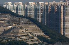 Graves cover a hillside in front of high-rise buildings in Hong Kong - Architecture and Urban Living - Modern and Historical Buildings - City Planning - Travel Photography Destinations - Amazing Beautiful Places Hong Kong Architecture, Architecture Design, High Rise Building, Brutalist, Urban Landscape, Planet Earth, Cemetery, World, Buildings