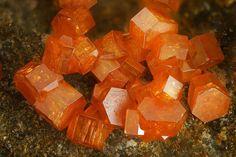 Vanadinite crystals from Apache Mine, Radium, Burch area, Globe Hills, Globe-. Orange Crystals, Stones And Crystals, Gem Stones, Minerals And Gemstones, Rocks And Minerals, Crystal Aesthetic, Cool Rocks, Beautiful Rocks, Mineralogy