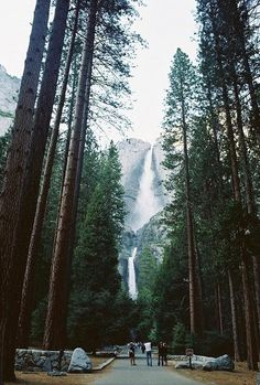 Yosemite Falls. Oh my goodness, this looks breathtaking.