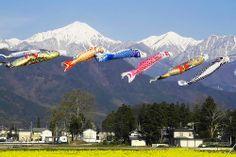 安曇野こいのぼり -- Azumino-shi, Nagano Prefecture, JP
