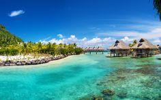 熱帯の海、海、ヤシの家 壁紙 - 2560x1600