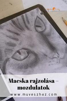 Íme a titok! Vége az ormótlan macskarajzoknak! Ha eléd áll a gyereked: Rajzolj cicát! Menni fog! Art, Art Background, Kunst, Performing Arts, Art Education Resources, Artworks