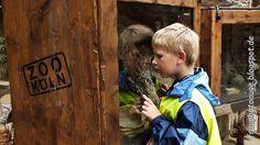 Augenblick mal ....: Ein Besucht im Zoo ......