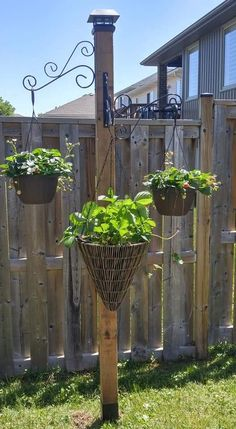 Allotment, Garden Pots, Diy And Crafts, Outdoors, Outdoor Structures, Patio, Decoration, Plants, Gardens