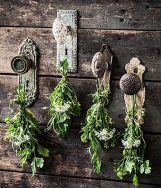 #DIY #drying herbs