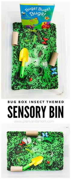 Join us as we learn about Bugs by way of an Insect themed Sensory Bin. Perfect hands on learning for toddlers and preschoolers. Toddler Sensory Bins, Sensory Tubs, Sensory Boxes, Sensory Play, Insect Activities, Sensory Activities, Preschool Activities, Summer Activities, Toddler Learning