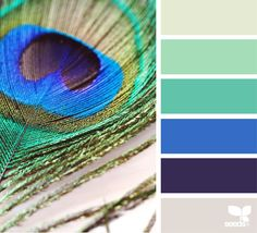 Feather Hues via @designseeds