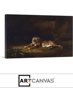 Ready-to-hang Tiger 1770 Canvas Art Print for Sale canvas art print for sale. Free hanging accessories and insurance. Art Prints For Sale, Canvas Art Prints, Painting, Painting Art, Paintings, Painted Canvas, Drawings