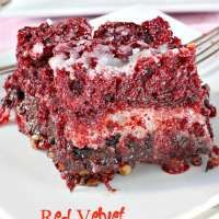 Have I got a spectacular dessert for you! Red Velvet Earthquake Cake. Let that sink in. This luscious cake has coconut, pecans and chocolate chips on the bottom layer, then those ingredients are topped with a lovely Red Velvet Cake batter followed by a scrumptious cheesecake layer. This dessert is wonderful, and if you like gooey…
