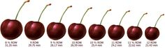 ALL MY EYES: Cherry Size Chart