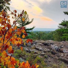 Connecticut  Pic of the Day 09.04.15  Photographer @marissagostini  Congratulations!   Autumn has set up on Ragged Mountain.  #scenesofCT #raggedmountain #raggedmtn #blueblazedtrail #metacomettrail  New England National Scenic Trail #hikeCT #ctvisit #bestofconnecticut #explore #adventure #leafpeepers  #connecticutgram