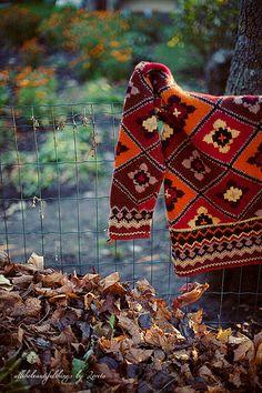 Orange Autumn | Loreta | Flickr