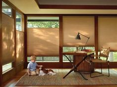 Window treatments from Hunter Douglas strike the perfect note in setting the mood of a room, yet our products are about more than just good looks. Many Hunter Douglas products are specifically designed with child safety in mind. So whether you choose a retractable cord, cordless or motorized lifting system, you can have peace of mind that your home just got a little bit safer.