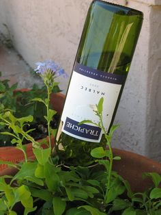 Recycled wine bottle, used with glass marbles and wire to make an automatic waterer